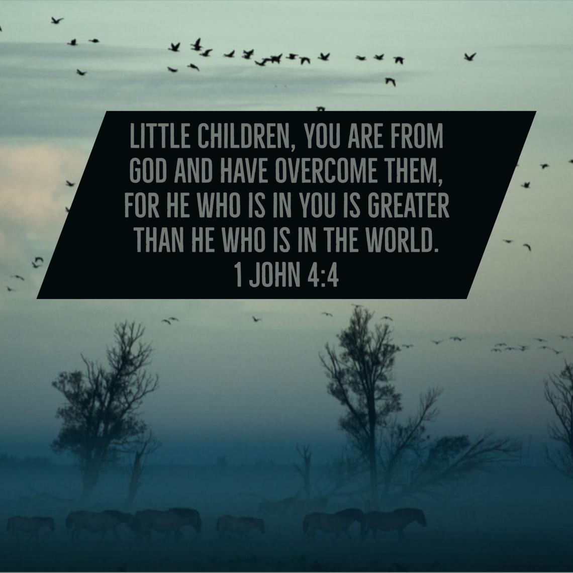 1 John 4 4
