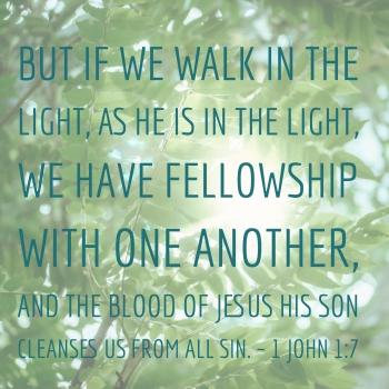 1 John 1 7